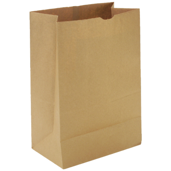 1bf9d9e07f4 57 lb Brown Paper Bags 1 6 BBL